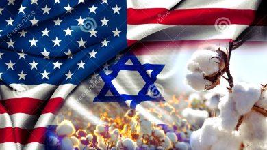 Photo of الخطة الأمريكية ـ الإسرائيلية للقضاء علي القطن المصري