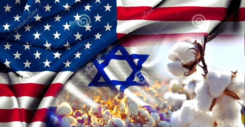 الخطة الأمريكية ـ الإسرائيلية للقضاء علي القطن المصري