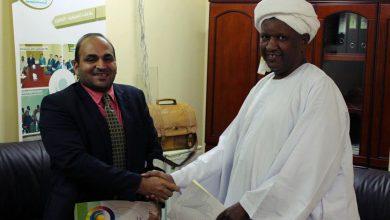 شراكة بين المعهد المصري ومركز ركائز المعرفة