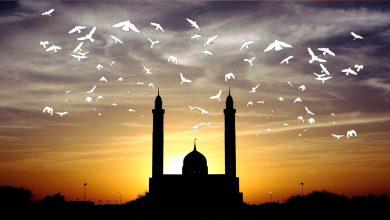 Photo of الحرية في الإسلام