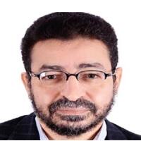 عامر عبد المنعم