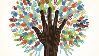 الهوية وإدارة التعدد والتنوع المجتمعي