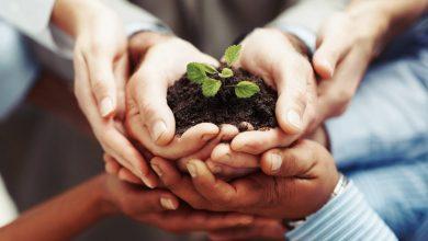 Photo of العمل التطوعي وتعزيز قيم المواطنة والمشاركة