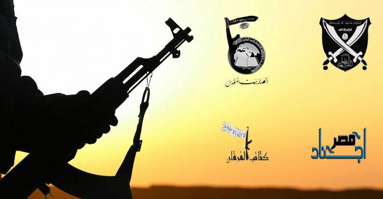 الحالة الجهادية بعد ثورة يناير 2011 (1)