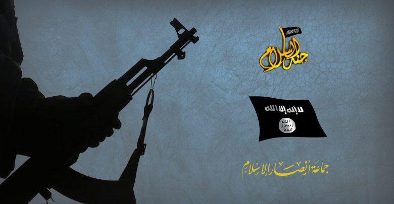 الحالة الجهادية بعد ثورة يناير 2011 (2)