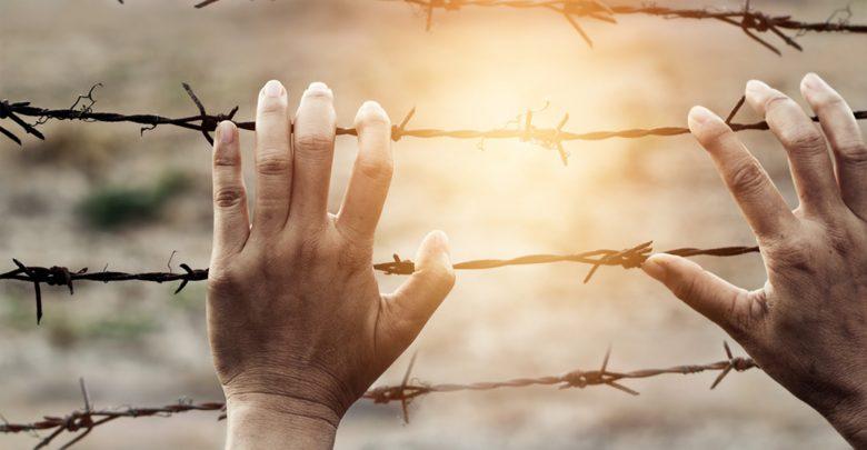 نطاق المسئولية الدولية عن انتهاكات حقوق الإنسان