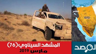 Photo of المشهد السيناوي مارس 2019