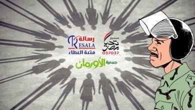Photo of المجتمع المدني ودعم المؤسسات الحكومية في مصر بعد يوليو 2013