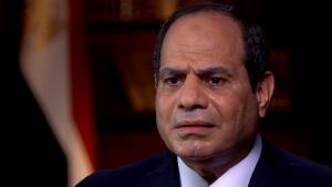 المشير/ عبد الفتاح السيسي - رئيس الجمهورية، بصفته وشخصة